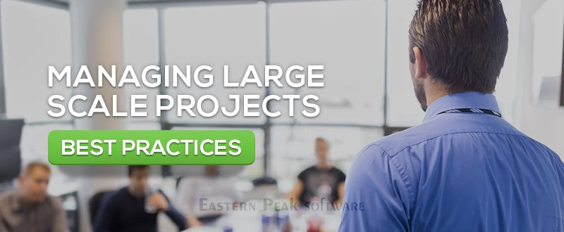 Managing Large Scale Projects: Best Practices : Eastern Peak