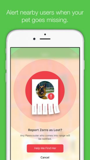paw-scout-iot-app-pet-finder-missing-pet-screen