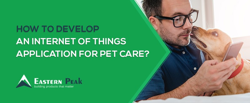 How to Develop an Internet of Things Application for Pet